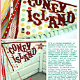 Coney Island Project